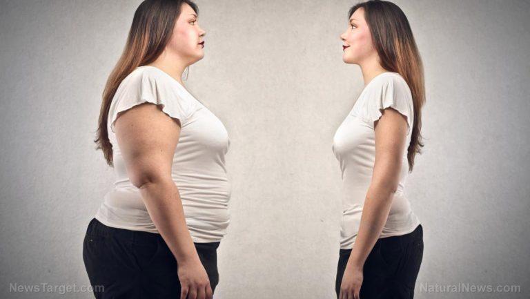 Obesità ormoni